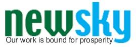 Logo Newsky
